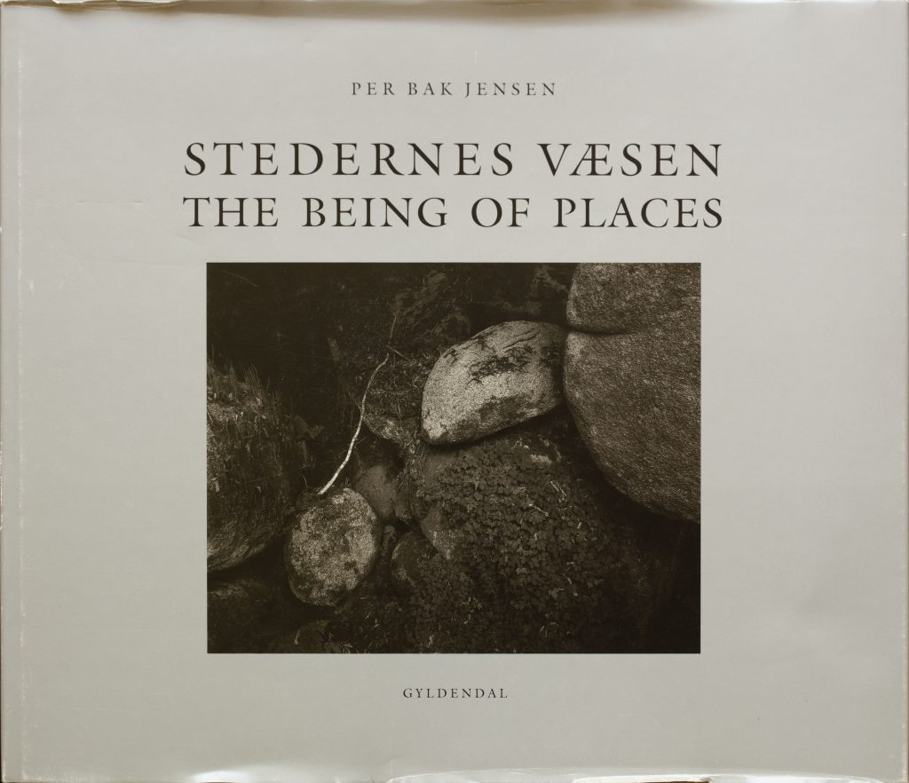 Per Bak Jensen, Stedernes Væsen (The Being of Places), 1993 . Photo: Per Bak Jensen