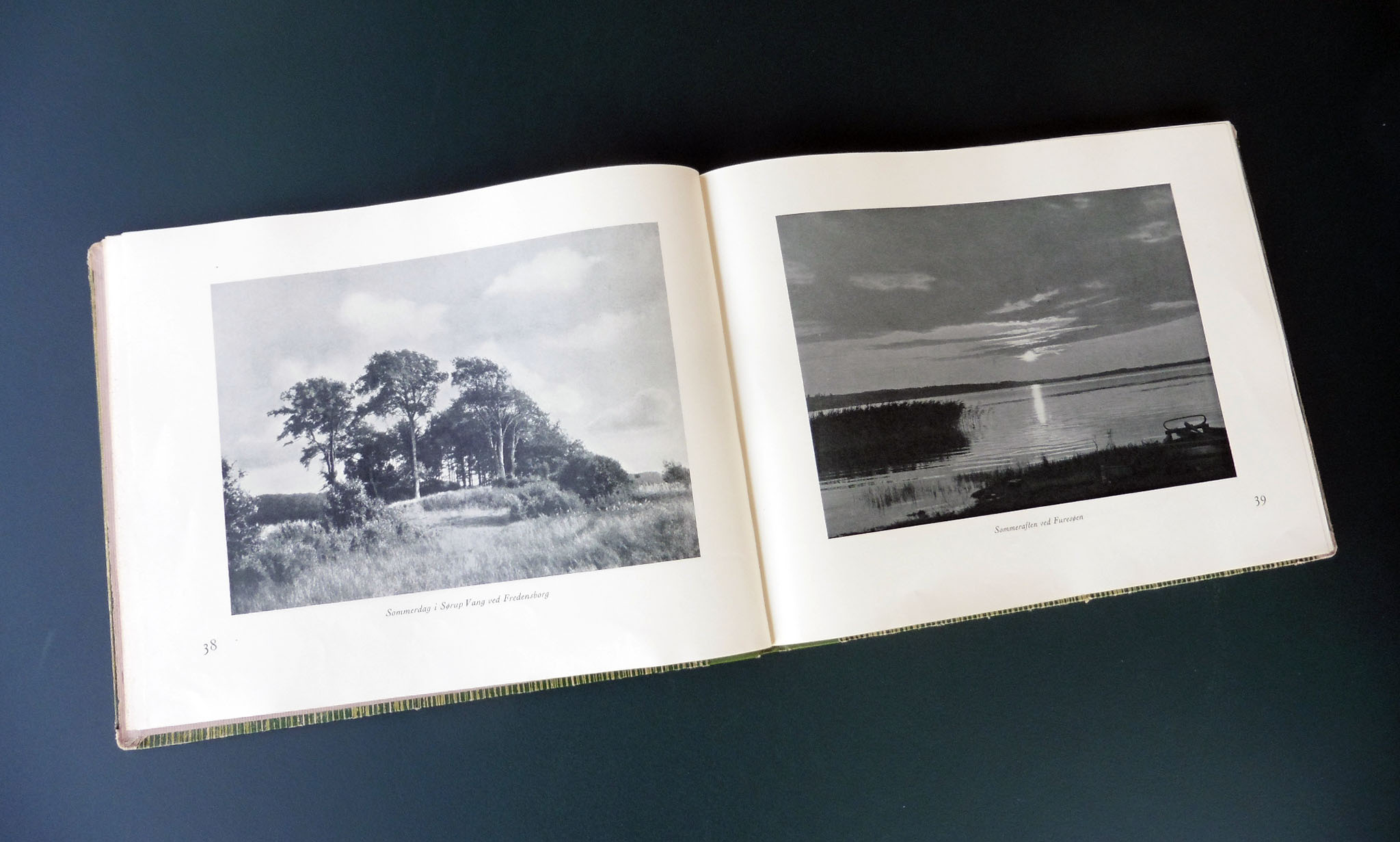 """Pictures of Denmark. Sigvart Werner's """"Danmarksbillede"""""""